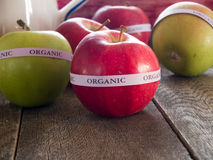 Red & green organic apples Stock Photos