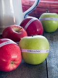 Red & green organic apples Stock Images