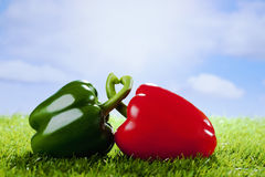 Red and green paprika on grass, copy space Stock Images
