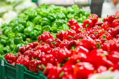 Red and green paprika pepper in supermarket Stock Image