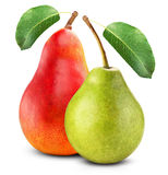 Red and green pears Stock Photography