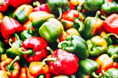 Red and green pepper background. Organic  market Royalty Free Stock Photos