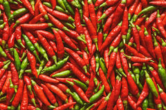 Red Green Pepper Royalty Free Stock Photography