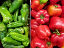 Red and green pepper. In supershop basket. Pepper agriculture theme royalty free stock image