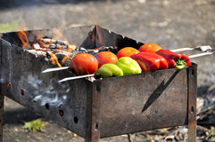 Red, green pepper and tomato on fire. (shish kebab Stock Photo