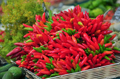 Red and green peppers. In a basket on a vegetable stand Stock Photography