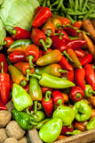 Red and Green Peppers (Capsicum) at the Market Royalty Free Stock Photos