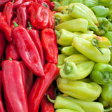 Red and green peppers closeup Royalty Free Stock Photography