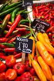 Red and green peppers hung to dry in the La Boqueria market Barcelona Stock Images