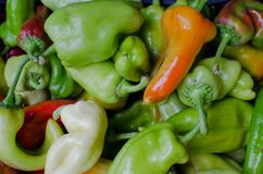 Red and green peppers. Pile of red and green peppers on the market on sale Stock Photography