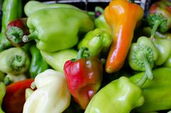 Red and green peppers. Pile of red and green peppers on the market on sale Stock Image