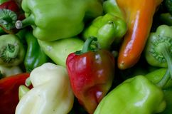 Red and green peppers. Pile of red and green peppers on the market on sale Stock Images