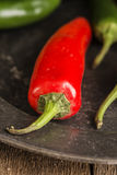 Red and green peppers in vintage retro moody natural lighting se Stock Photo