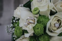 Red and Green Petaled Flowers Bouquet With Silver-colored Ring Stock Photography
