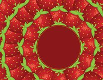 Strawberry background. vector Royalty Free Stock Photos