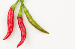 Red and green Thai chili peppers. Three Thai chili peppers fresh from the garden., with copy space royalty free stock photography
