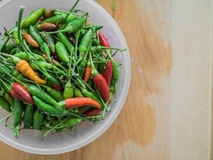 Red and green Thai Chili. stock photos