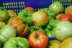 Red and green tomatoes on a box. Red and green group of tomatoes from a market Royalty Free Stock Photo