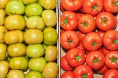 Red and green tomatoes close up. The contrast of red and green tomatoes close up Stock Photos