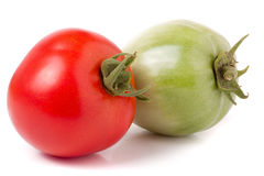 Red and green tomatoes isolated on white background.  Royalty Free Stock Images