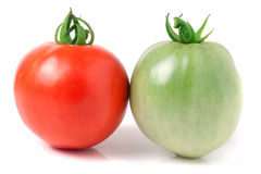 Red and green tomatoes isolated on white background.  Stock Images