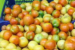 Red and green tomatoes from a market. Healthy tomatoes as a background Stock Images