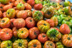 Red and green tomatoes for sale at a market. In Madrid, Spain Royalty Free Stock Photography