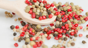 Red, green, white and black pepper Stock Images