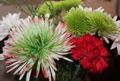 A Red, Green and White Mixed Bouquet. White daisies, a large variegated , and smaller pale green chrysanthemums, and a red carnation make for a lovely seasonal Stock Photo