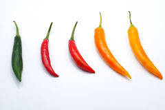 Red green yellow color chilli pepper isolated on white background Royalty Free Stock Images