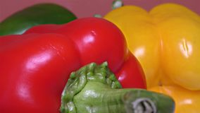 Red, Green and Yellow Paprika – Close Up, Detail, Macro. Close Up of some Yellow and Green and Red Peppers – Detail, Macro stock footage