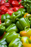 Red, green and yellow peppers. Close of of red, green and yellow peppers in a marketplace Stock Photography