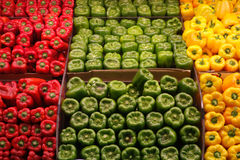 Red Green and Yellow Peppers royalty free stock photo