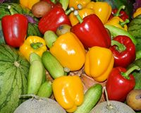 Red, green and yellow sweet bell peppers. Mixed vegetable Red, green and yellow sweet bell peppers Stock Photography
