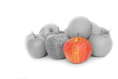 Red and grey apples Stock Photography