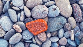 Red, grey, yellow and blue rocks. On the Ontario lake shore. Macro. Rad rock is in the middle Royalty Free Stock Photo