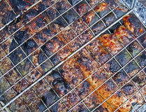 Red grilled fish cooking on metal grid, picnic, Royalty Free Stock Photos