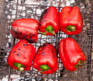Red grilled pepper on bbq Stock Images