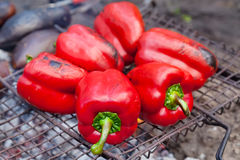 Red grilled pepper on bbq Royalty Free Stock Image