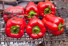 Red grilled pepper on bbq. Fireplace stock photo
