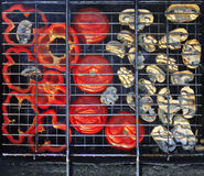 Red grilled pepper, tomato and mushrooms Stock Photos
