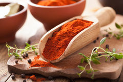 Red ground paprika spice in wooden scoop, bowl Royalty Free Stock Photography