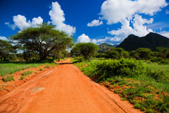 Red ground road, bush with savanna. Tsavo West, Kenya, Africa. Red ground road and bush with savanna landscape in Africa. Tsavo West, Kenya stock images