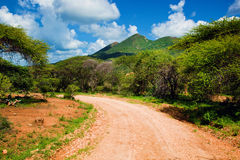 Red ground road and savanna. Tsavo West, Kenya, Africa Royalty Free Stock Image
