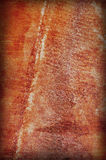 Red Grungy Background Stock Image