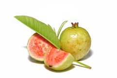 Red guava isolated on white background. NTropical fruit concept .Guava fruits with green leaf royalty free stock image