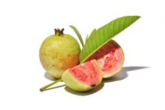 Red guava isolated on white background. NTropical fruit conceptnGuava fruits with green leaf stock image