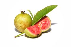 Red guava isolated on white background. Tropical fruit concept .Guava fruits with green leaf royalty free stock photography