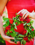 Red guelder wreath Stock Photos