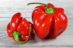 Red habaneros Royalty Free Stock Photography